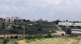 Land for Sale Edde Jbeil Area 1737Sqm