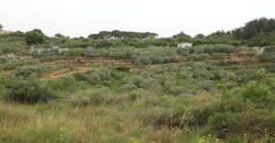 Land for Sale Mrah Chdid Batroun Area 676Sqm