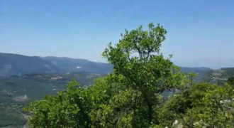 Land for Sale Ehmej Jbeil Area 3200Sqm