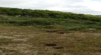 Land for Sale Bejjeh Jbeil Area 13200Sqm