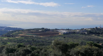 Land for Sale Gharzouz Jbeil Area 1601Sqm