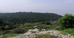 Land for Sale Gharzouz Jbeil Area 3550Sqm