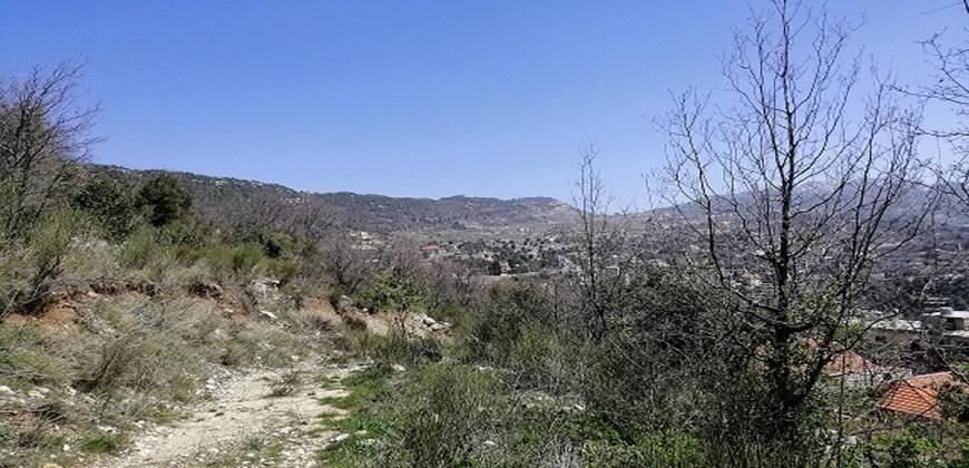 Land for Sale Ehmej Jbeil Area 786Sqm