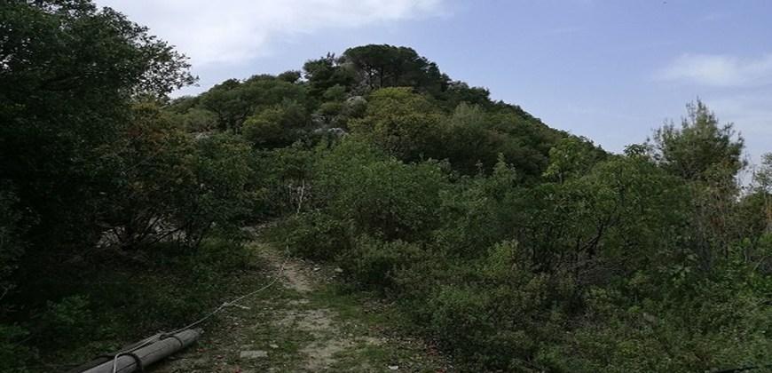 Land for Sale Maarab Kesserwan Area 11702Sqm