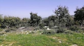 Land for Sale Kharbeh Jbeil Area 870Sqm