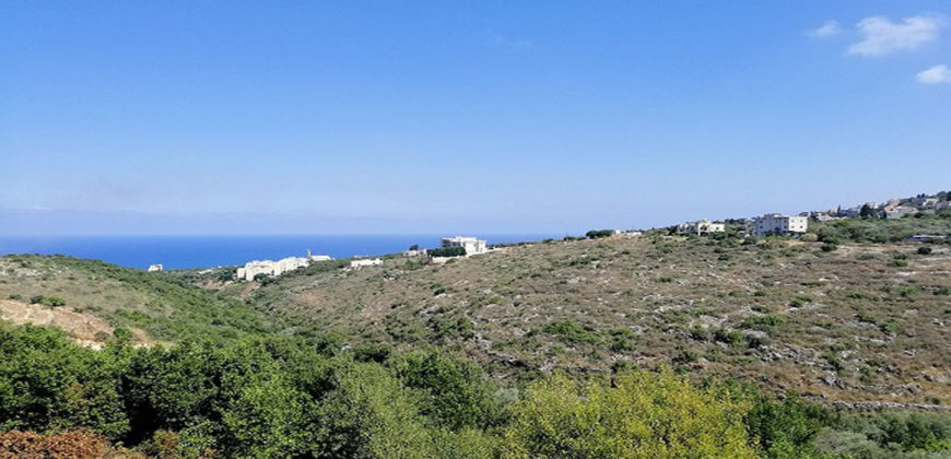 Building for Sale Chikhane Jbeil Building Area 460Sqm and Land Area 1100Sqm