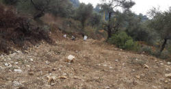 Land for Sale Hardine- Beit Kassab Batroun Area 721Sqm