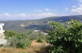 Land for Sale Zebdine Jbeil Area 650Sqm