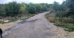 Land for Sale Mechmech Jbeil Area 1443Sqm