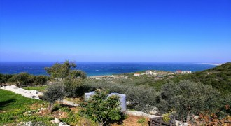 Land for Sale Berbara Jbeil Area 962Sqm