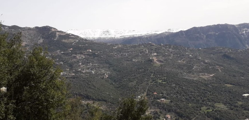 Land for Sale Tourzaiyya Jbeil Area 570Sqm