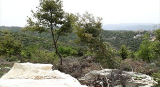 Land for Sale Ras Osta Jbeil Area 7191Sqm