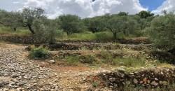 Land for Sale Ftahat Batroun Area 1764Sqm