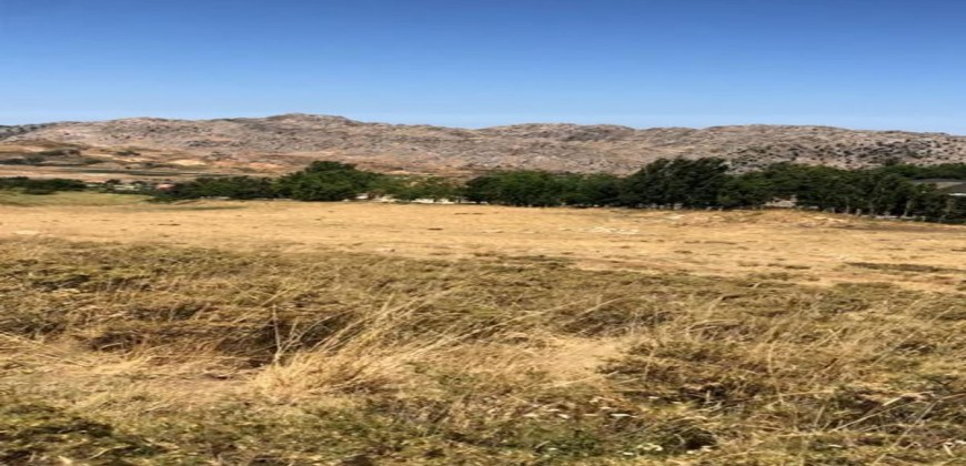 Land for Sale Aaqoura ( Laqlouq ) Area 810Sqm