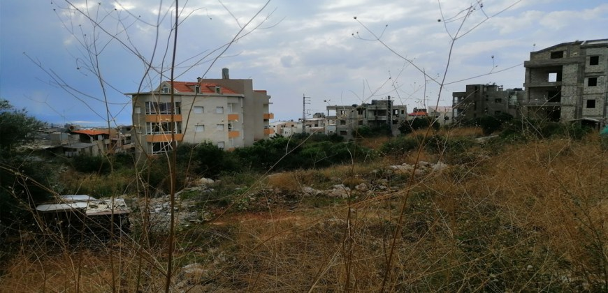 Land for Sale Aamchit Jbeil Area 1003Sqm