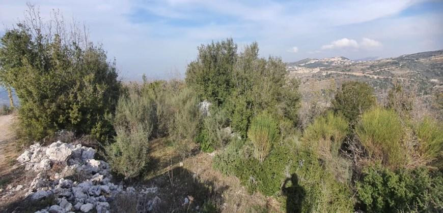 Land for Sale Bchaaleh Batroun Area 1506Sqm