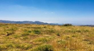Land for Sale Tannourine – Faouqa – ( Msateb -Ain Et Tillaje ) Batroun Area 3800Sqm