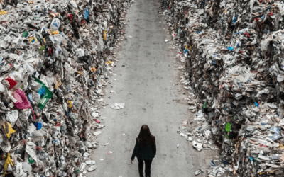 Plastover: An Exodus from Plastic Waste.