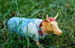 Dorothy in grass