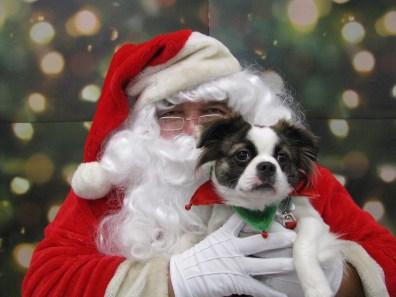 Santa and Francie