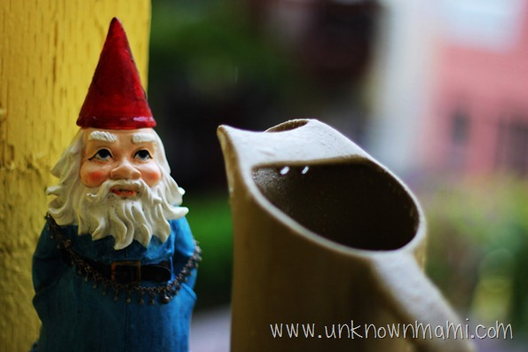 Gnome in Rain