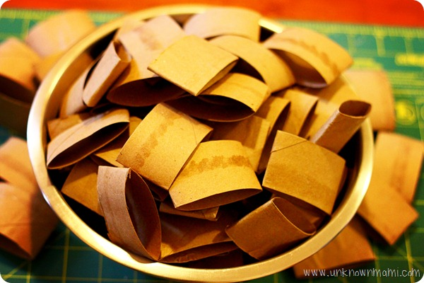 What-to-make-with-toilet-paper-rolls