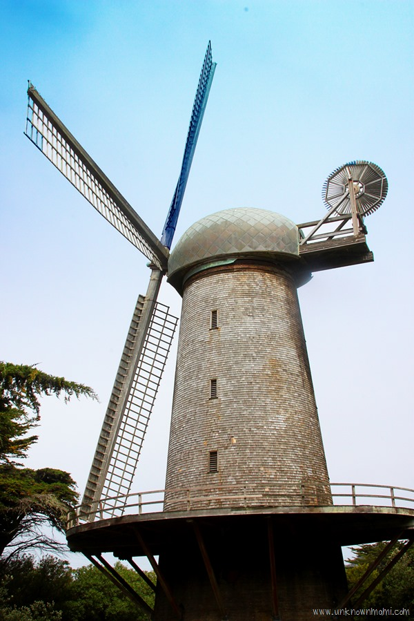 Windmill_in_Golden_Gate_Park-unknownmami
