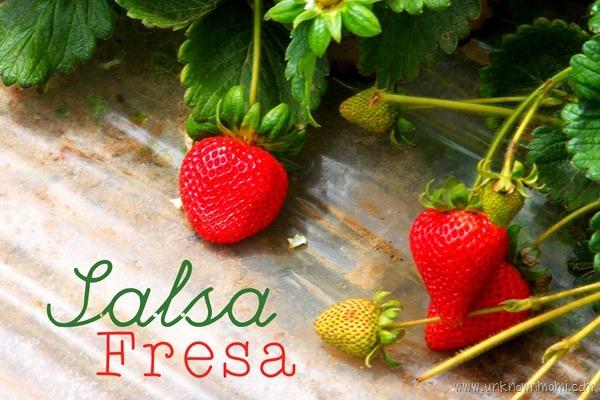 Salsa_fresa-unknownmami