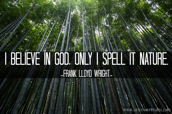 Frank Lloyd Wright Nature Quote