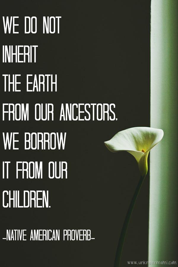 Navtive American Earth Proverb