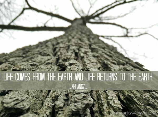 Zhuangzi Earth Quote