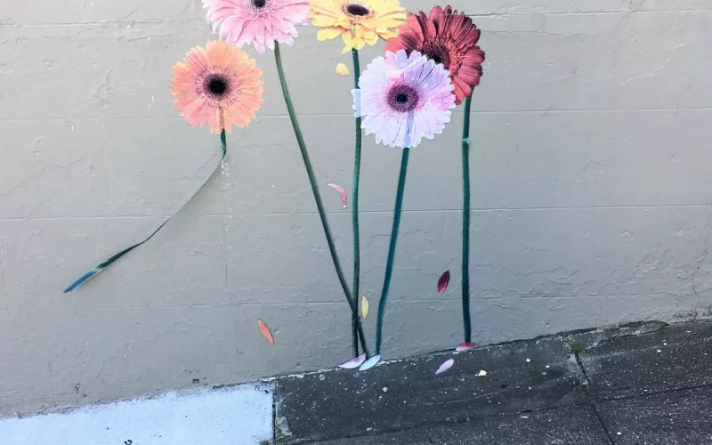 Gerbera Daisies on a San Francisco Wall (Sundays In My City)