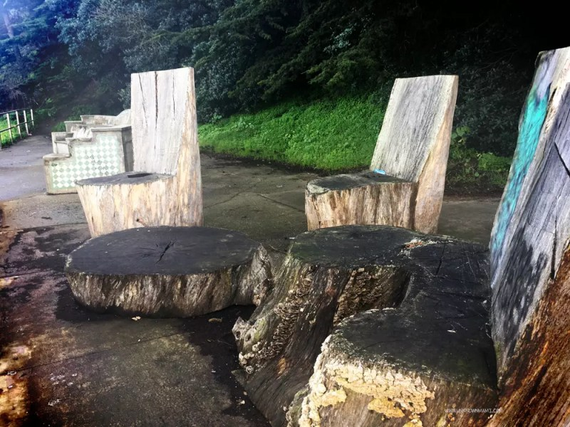 Tree Stump Chairs in Fort Mason