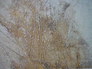 Untitled I 2010 C