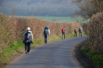 Hedgerows heading out from Ashford.