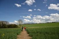 Crossing Waldershare park