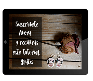 Newsletter By Cousiñas