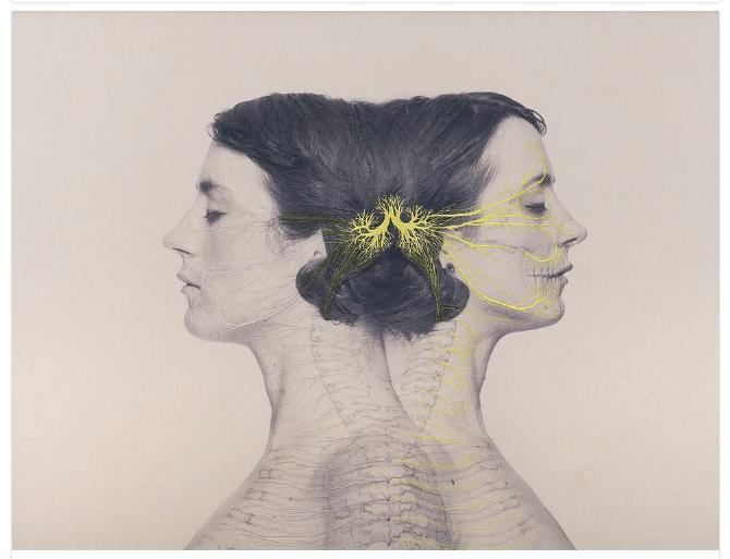 Los bordados de Juana Gómez