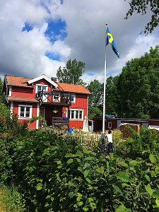 Vaxholm resident raising the Swedish flag in front garden of his two story red-and-white clapboard home. By C.S. White