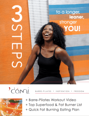 dami free weight loss mealplan and ebook