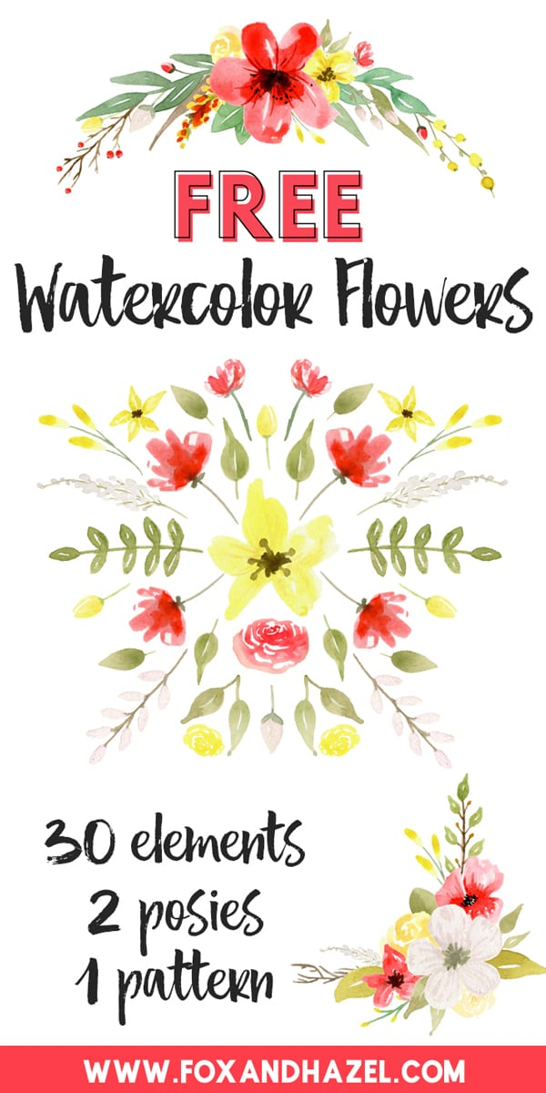 Free-Watercolor-Flower-Graphics---Red-&-Yellow---Fox-+-Hazel