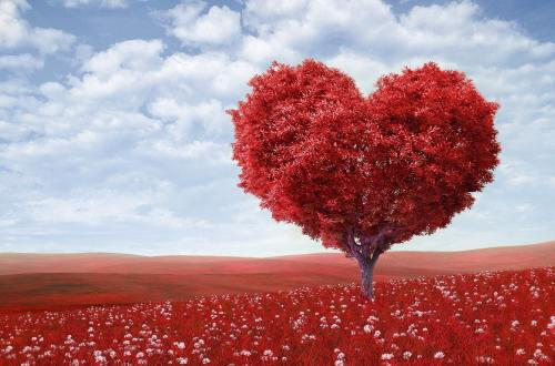 a red tree in a shape of a heart
