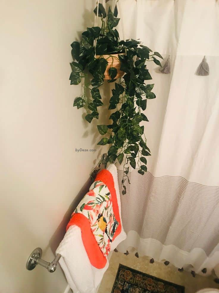 a vignette of the towels and hanging plant
