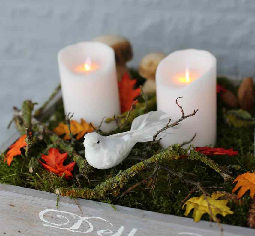 Sompex, ideer til udendørs juledekoration, led lys