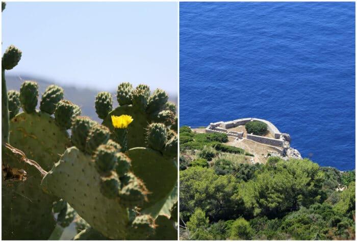 capri ø, amalfikysten, rejseguide