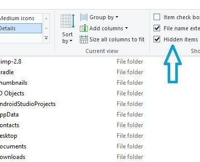 Visible Hidden Items on Windows 10