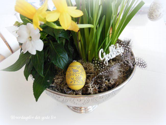 En liten vertinnegave på påskeaften