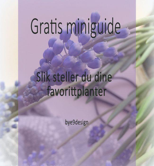 Gratis miniguide til stell av favorittplantene dine