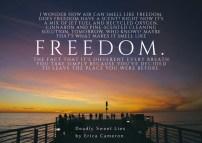 dsl-freedom