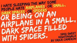 ssn-airplanesandspiders